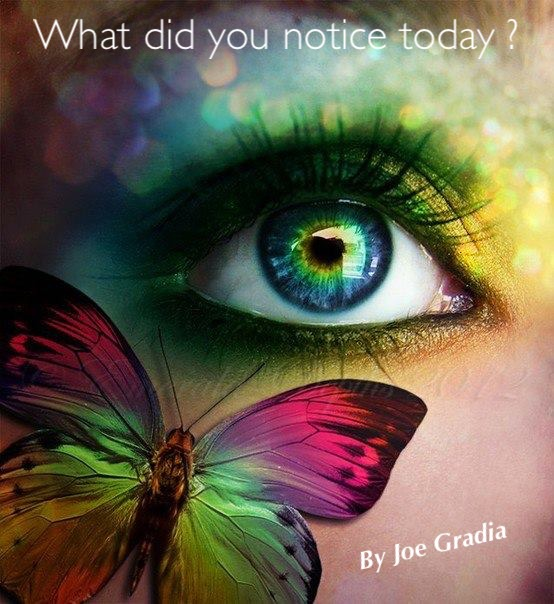 What did you miss today? By Joe Gradai