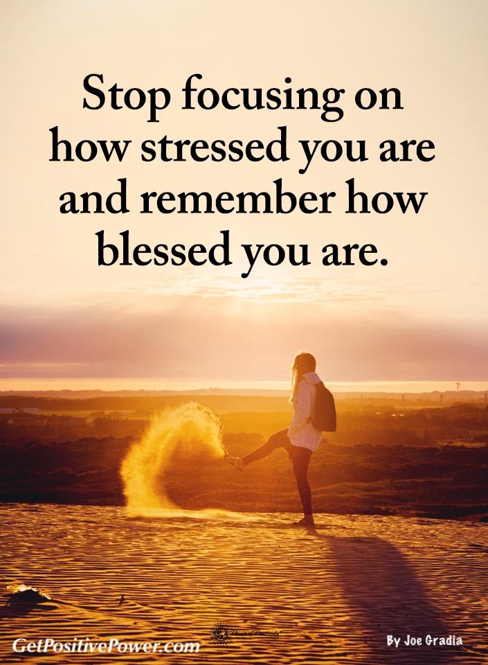 #focus by Joe Gradia